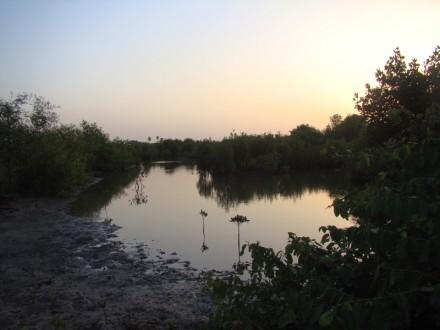 Excursión descubre Gambia