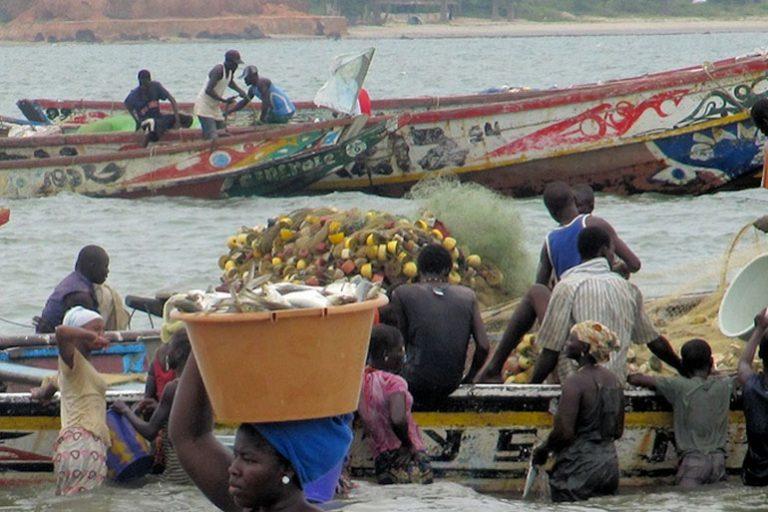 viajar a Gambia: tanji
